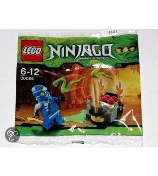 LEGO Ninjago Snake Battle - 30085